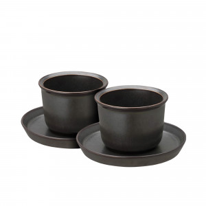 Kinto Leaves to Tea Set